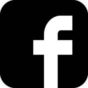 Pygmy Elephant Facebook