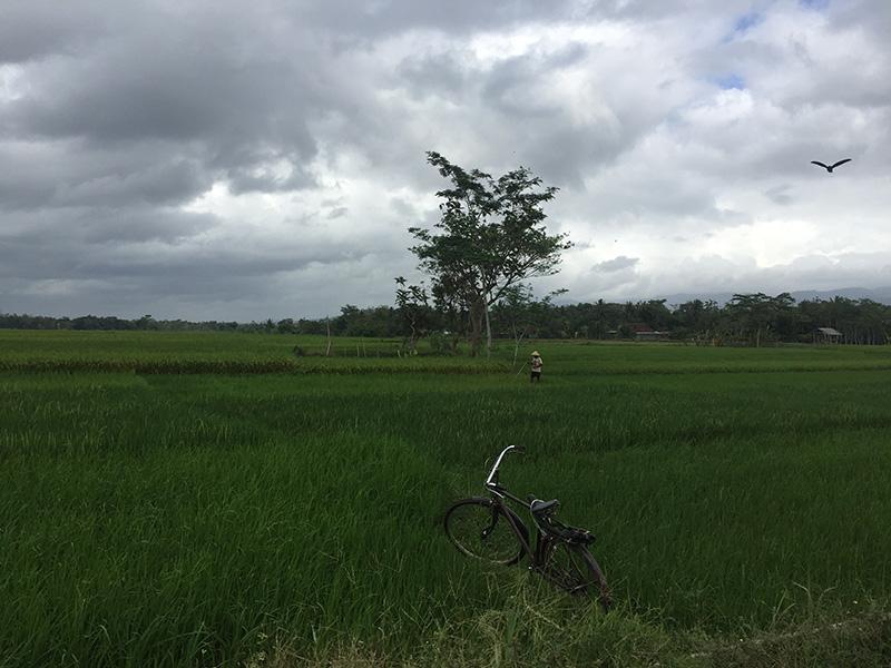 Yogkyakarta Digital Nomad
